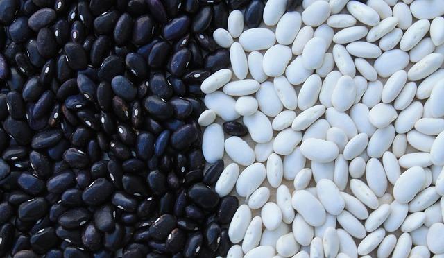 bílé fazole