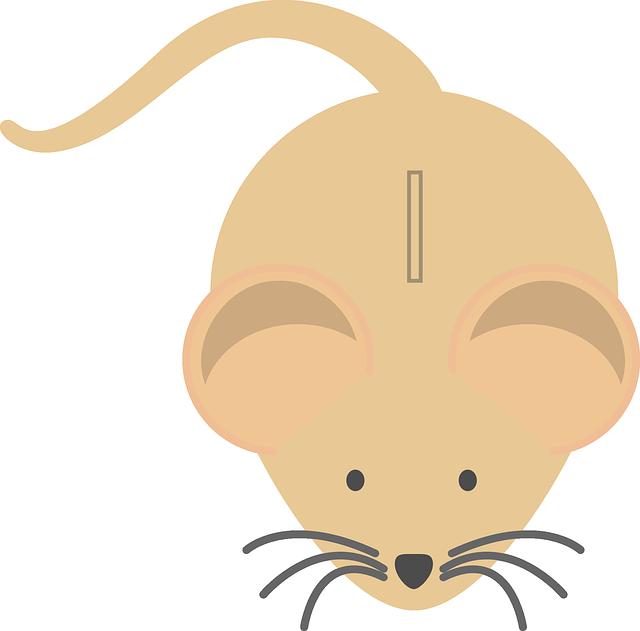 Pokladnice myš
